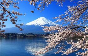 网络日语一对一外教价格贵不贵?哪类外教更受家长欢迎?