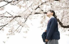 怎样提高孩子的日语阅读能力